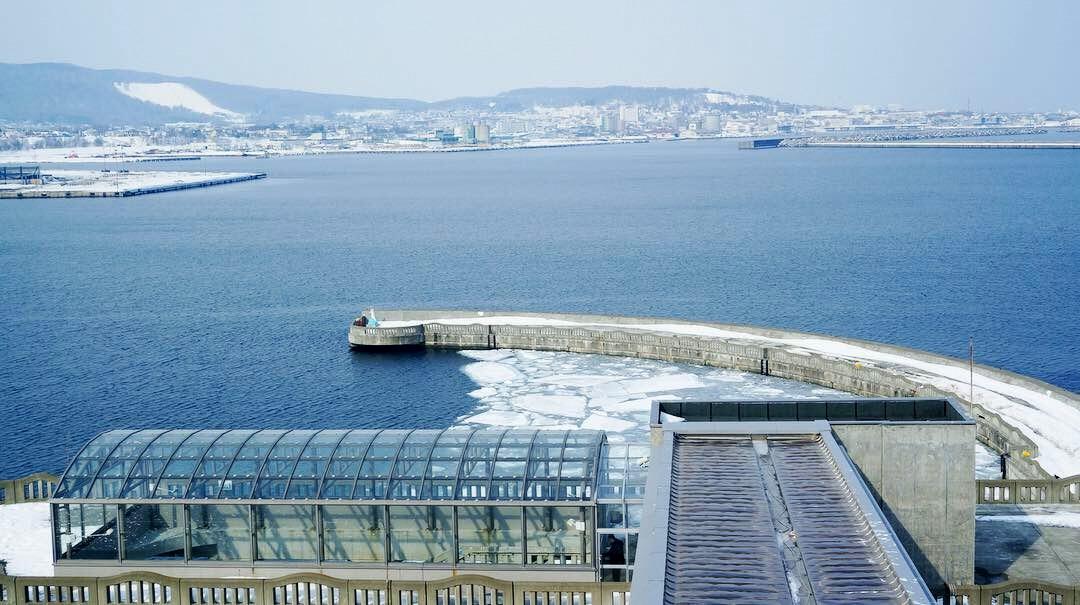 紋別市 オホーツク海 流氷 ガリンコ号 アザラシ