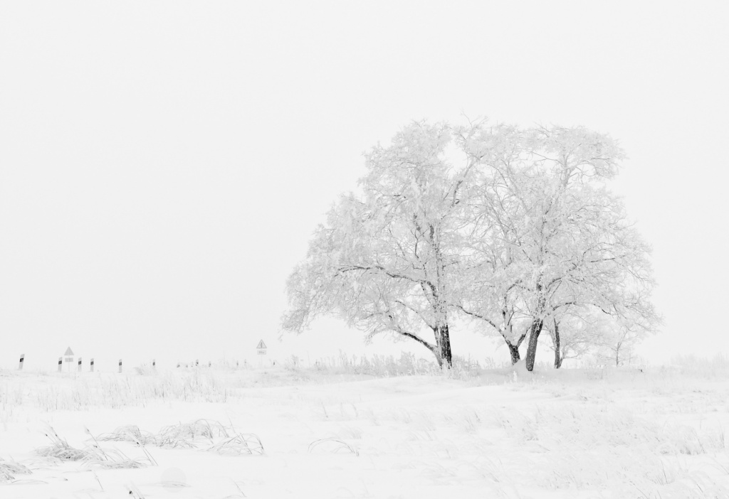 大雪で車が立ち往生した場合